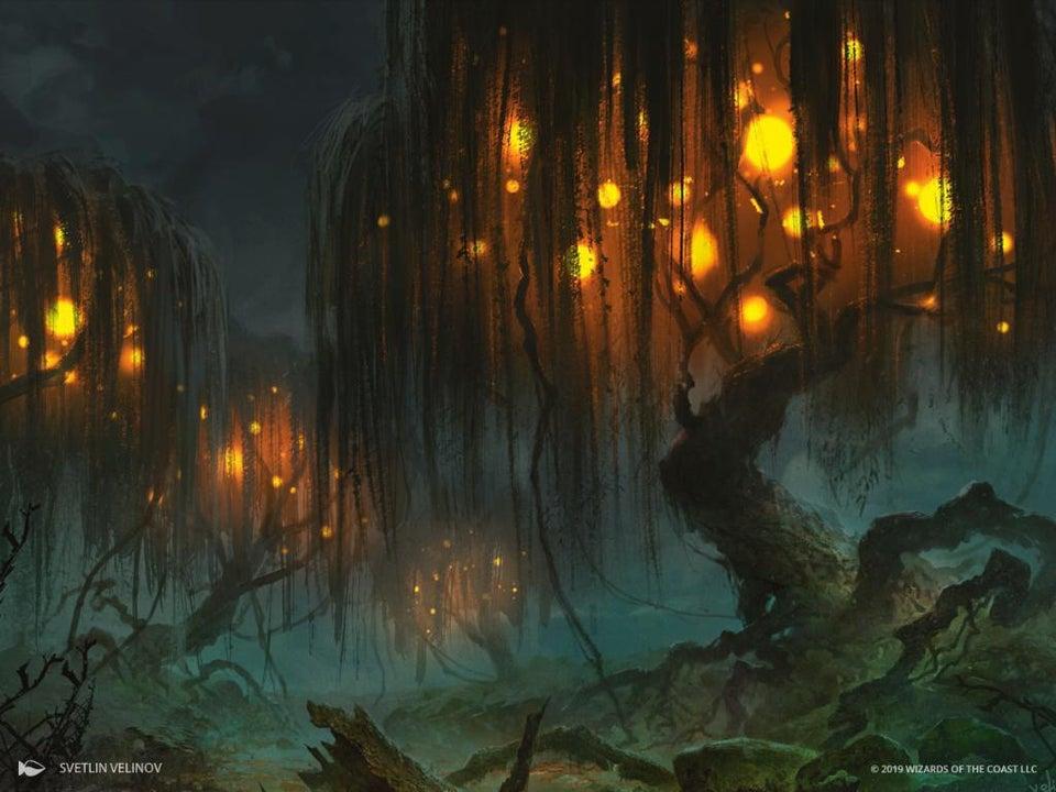 Swamp Art Magic Throne of Eldraine