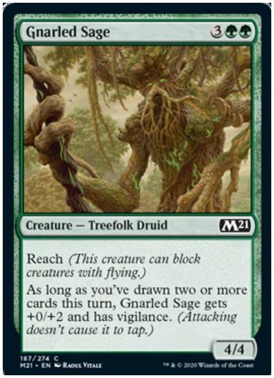 M21 Gnarled Sage MTG